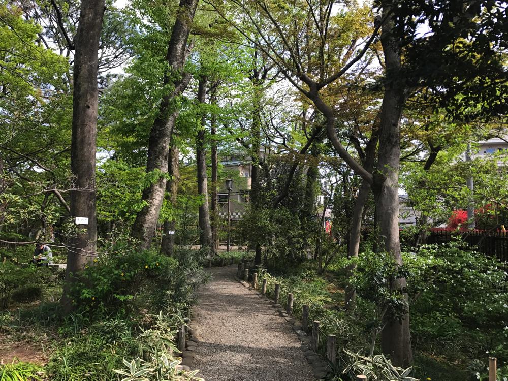 庭園内には約300種類の草木類が植栽されている