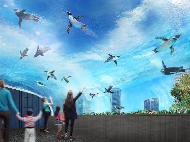 """""""世界初""""展示方法の新エリアがオープンに サンシャイン水族館、大規模リニューアル"""
