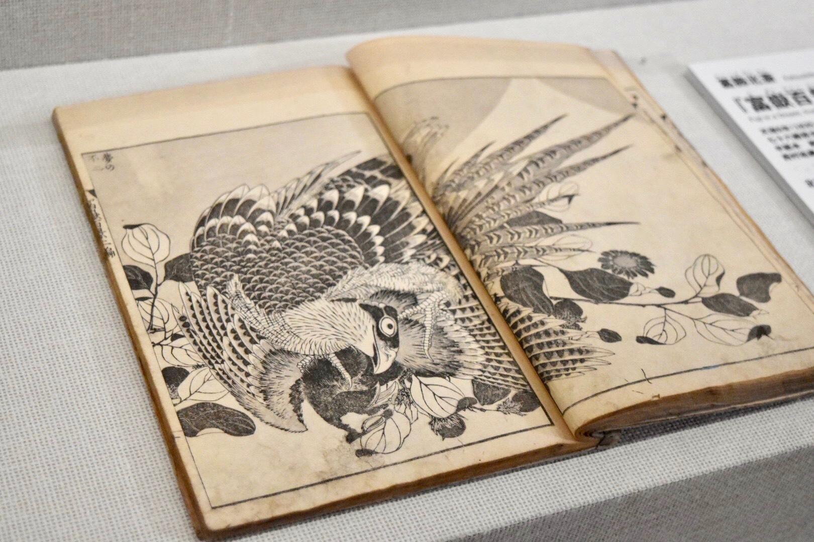 葛飾北斎 『富嶽百景』二編 夢の不二 天保6年(1835)すみだ北斎美術館所蔵