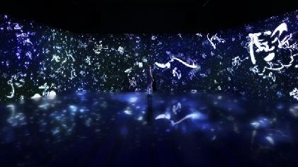チームラボが書道家・紫舟とコラボ 宇宙の中で言葉が躍動するデジタル作品を展示