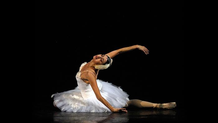 ニーナ・アナニアシヴィリ「瀕死の白鳥」