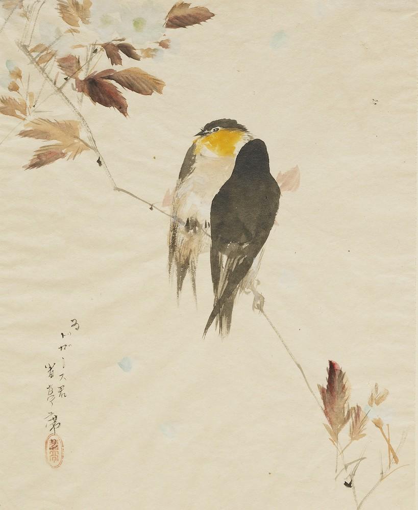 《鳥図(枝にとまる鳥)》1878(明治11)年/紙本淡彩/一面/クラーク美術館 Clark Art Institute. clarkart. edu