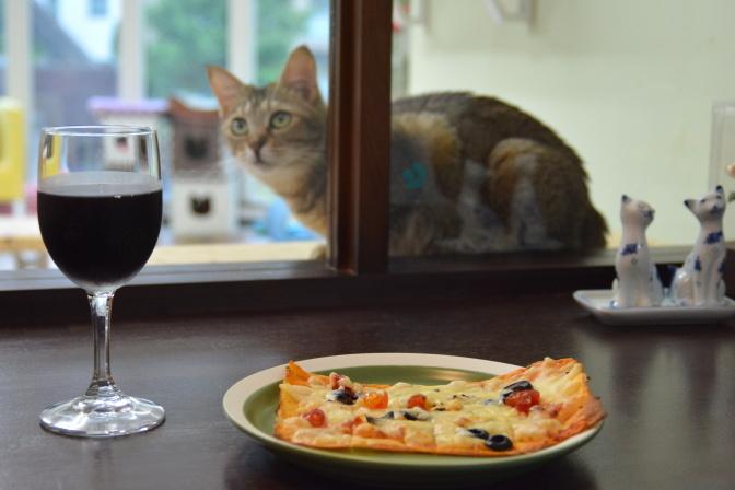 ワインやピザを楽しみながら、猫を観察することもできます