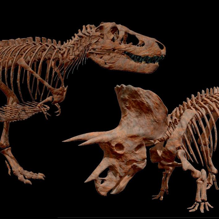 ティラノサウルスとトリケラトプス (写真=国立科学博物館・凸版印刷株式会社提供)