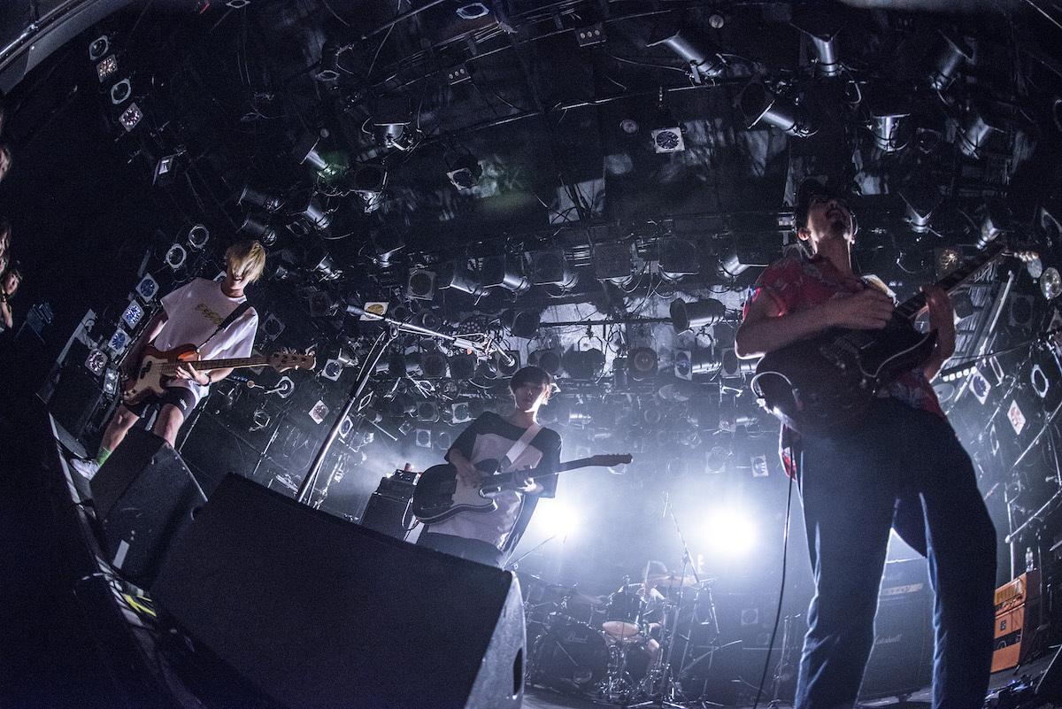 PELICAN FANCLUB photo by Daisuke Miyashita