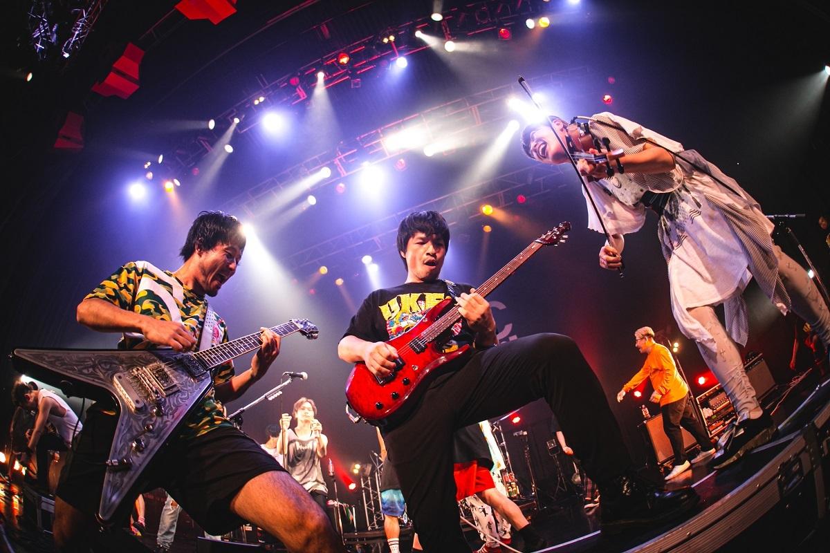 TOTALFAT:Photo by かわどう