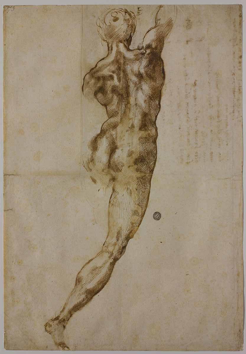 ミケランジェロ・ブオナローティ 《背を向けた男性裸体像》 1504-05年 カーサ・ブオナローティ