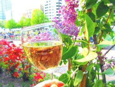 道産ワインと食を堪能!大通公園でワインガーデン開催