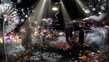 花の体験型アート展『FLOWERS by NAKED』 2018年はバージョンアップして日本橋で開催