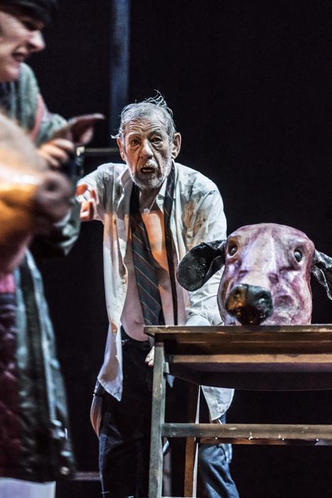 NTL 2018 King Lear - Ian McKellen (King Lear) at Duke of Yorks Theatre. Photo by Johan Persson