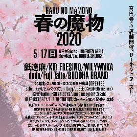 サーキットフェス『春の魔物』Fuji Taito、どんぐりず、北里彰久(Alfred Beach Sandal)、Gokou Kuytら最終追加アーティスト6組を発表