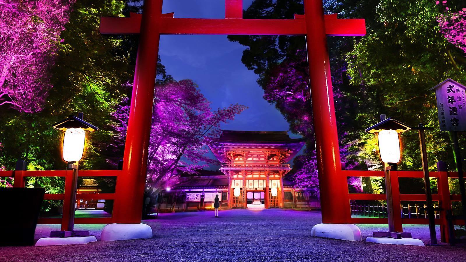 呼応する木々 – 下鴨神社 糺の森 / Resonating Trees – Forest of Tadasu at Shimogamo Shrine teamLab, 2016, Interactive Digitized Nature, Endless, Sound: Hideaki Takahashi