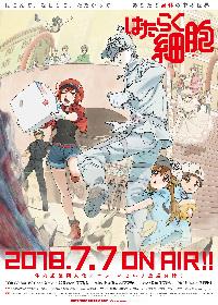 TVアニメ『はたらく細胞』第2弾キービジュアル&新PV公開!
