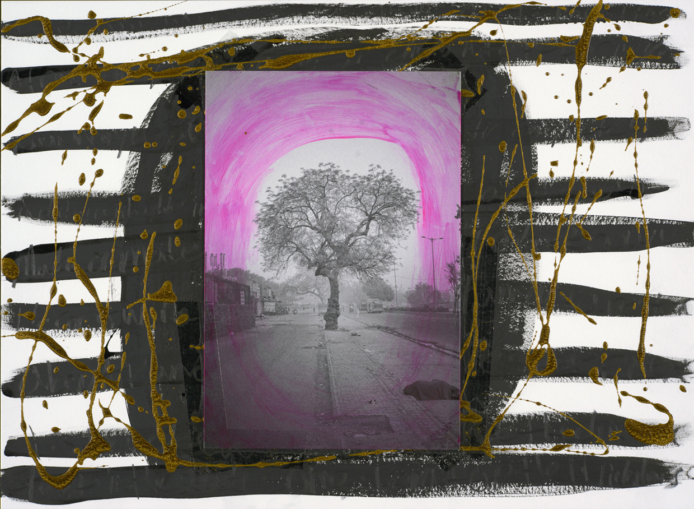 ラッセル・スコット・ピーグラー(アメリカ、1980)《早朝の木、デリー》(C)Russell Scott Peagler