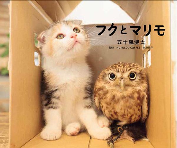 フクとマリモ写真集(KADOKAWA) 1,000円+税
