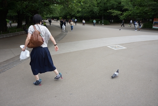 乙幡啓子「ハトヒール」