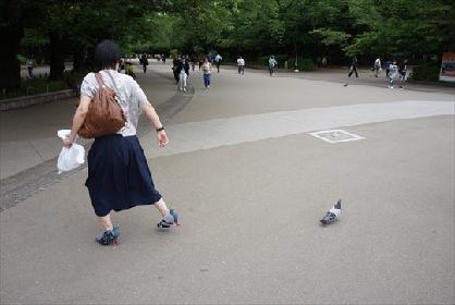 ザリガニワークスらによるバカ作品発表イベント『おバカ創作研究所 研究発表in京都』展が開催に