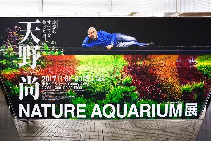 写真と水槽で体感する、大自然の美しさ 『天野尚 NATURE AQUARIUM展』レポート