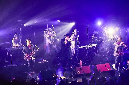 """野田洋次郎とのライブ初共演も実現、バンドの最新形を見せたSOIL&""""PIMP""""SESSIONS『晩秋のハリネズミ』東京公演"""