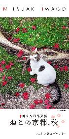 岩合光昭写真展『ねこの京都、秋』が、ノエビア銀座ギャラリーで開催