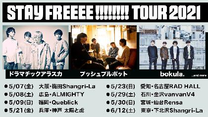 LD&K新レーベル「STAY FREEEE!!!!!!!!」ドラマチックアラスカ、プッシュプルポット、bokula.出演のレーベルツアーを開催