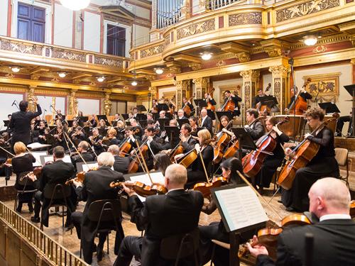 トーンキュンストラー管弦楽団 ©Werner Kmetitsch