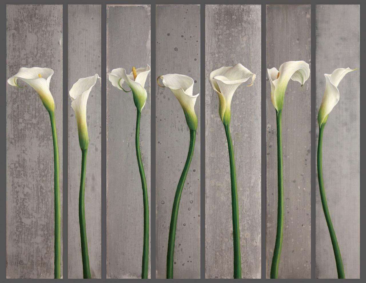 Seven Calla Lilies