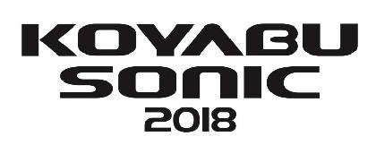 『KOYABU SONIC 2018』今年も開催、出演者に吉本新喜劇ィズ、爆乳三姉妹