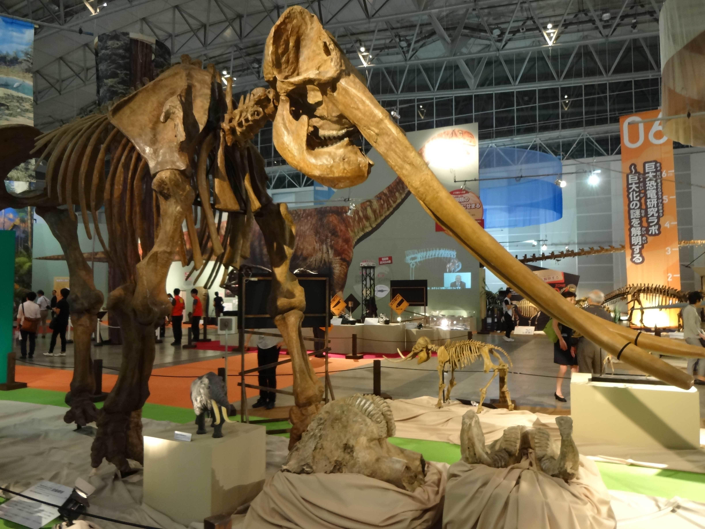 「メガ恐竜展2015-巨大化の謎にせまる」展示風景
