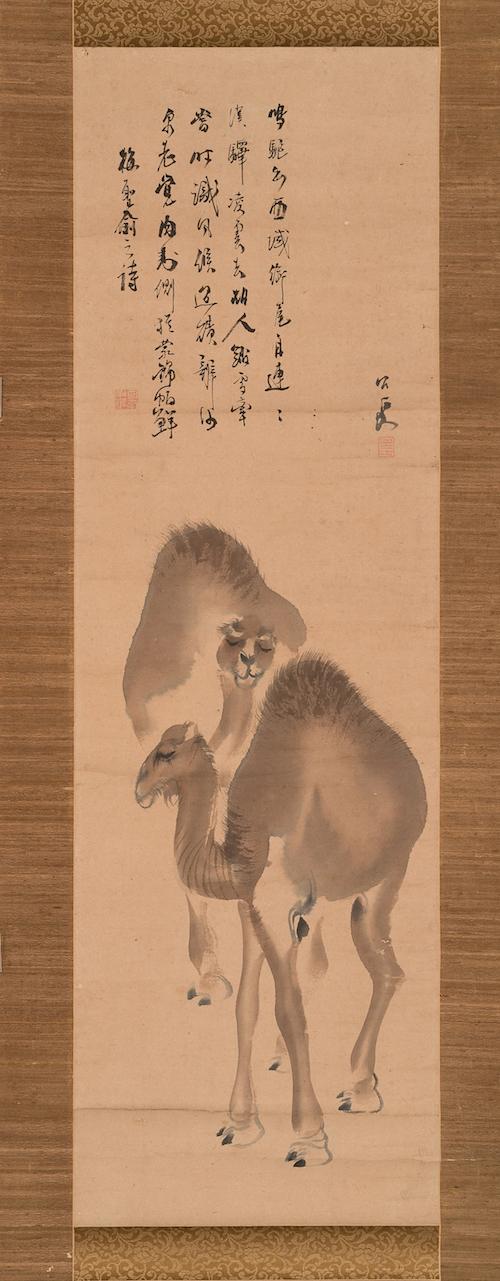 上田公長《双駱駝図》個人蔵  江戸時代に日本にやってきたラクダを描いた作品。初めてみる異国の珍獣にみんな興味津々だったようで、特徴をよく捉えている。長いまつ毛がチャーミング