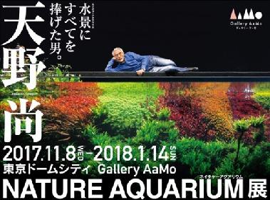 """自然の生態系を再現する水槽""""ネイチャーアクアリウム""""を紹介 『天野尚 NATURE AQUARIUM展』が開催に"""