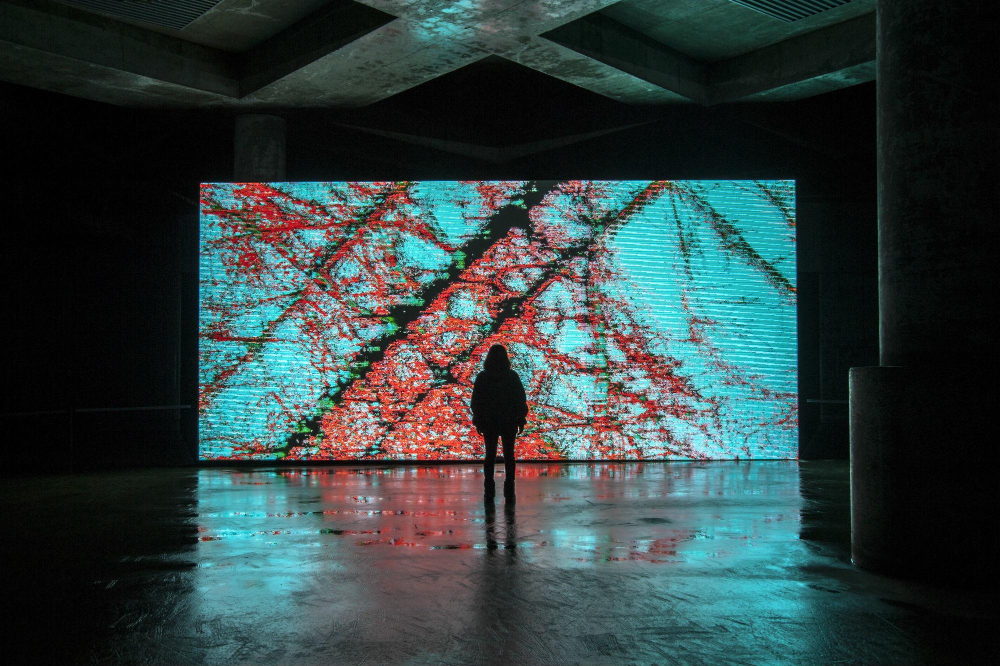 出展作品(参考画像):平川紀道「DATUM」2016年