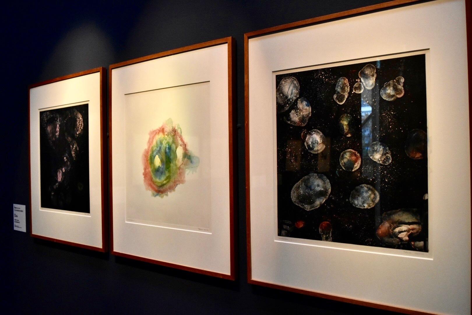 右から:《Constellation(星座Ⅰ)》 駒井哲郎 昭和46年 東京都現代美術館蔵、《Constellation(星座 II)》 同作者 同年 同館蔵、《Constellation(星座 Ⅲ)》 同作者 同年 同館蔵