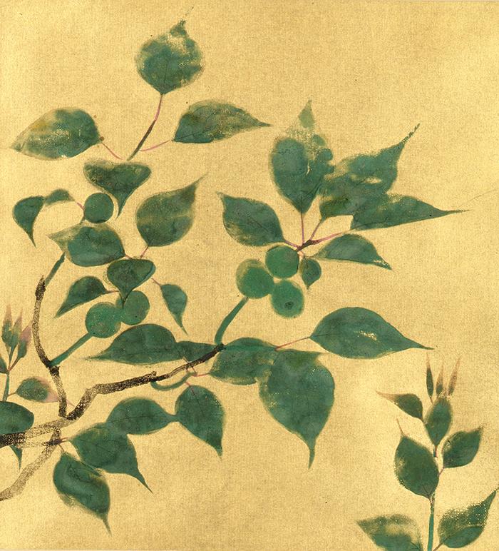 速水御舟《青梅》 1929(昭和4)年 紙本金地・彩色 山種美術館