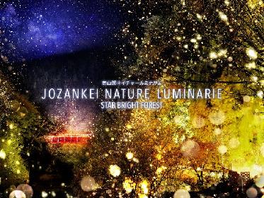 北海道・定山渓の大自然で、ネイキッドによる体験型ナイトウォーク ネイチャールミナリエが10月まで開催中