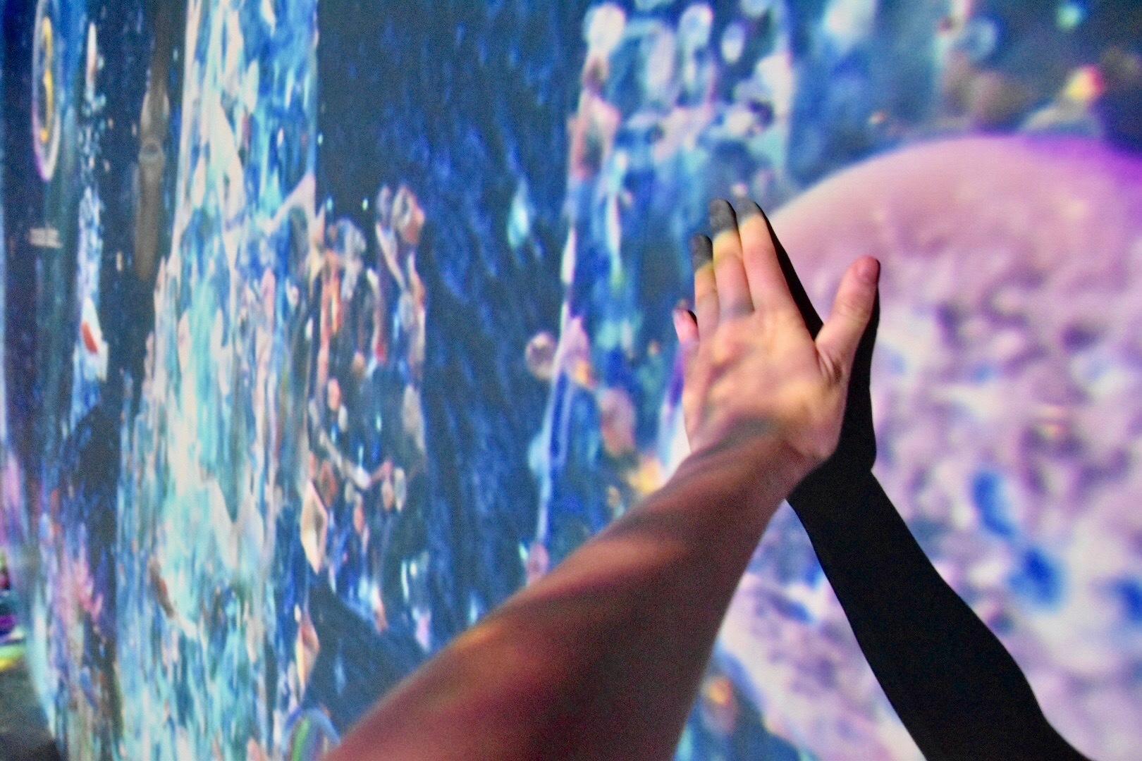 横壁面の泡に触れると、海の生物が生まれる