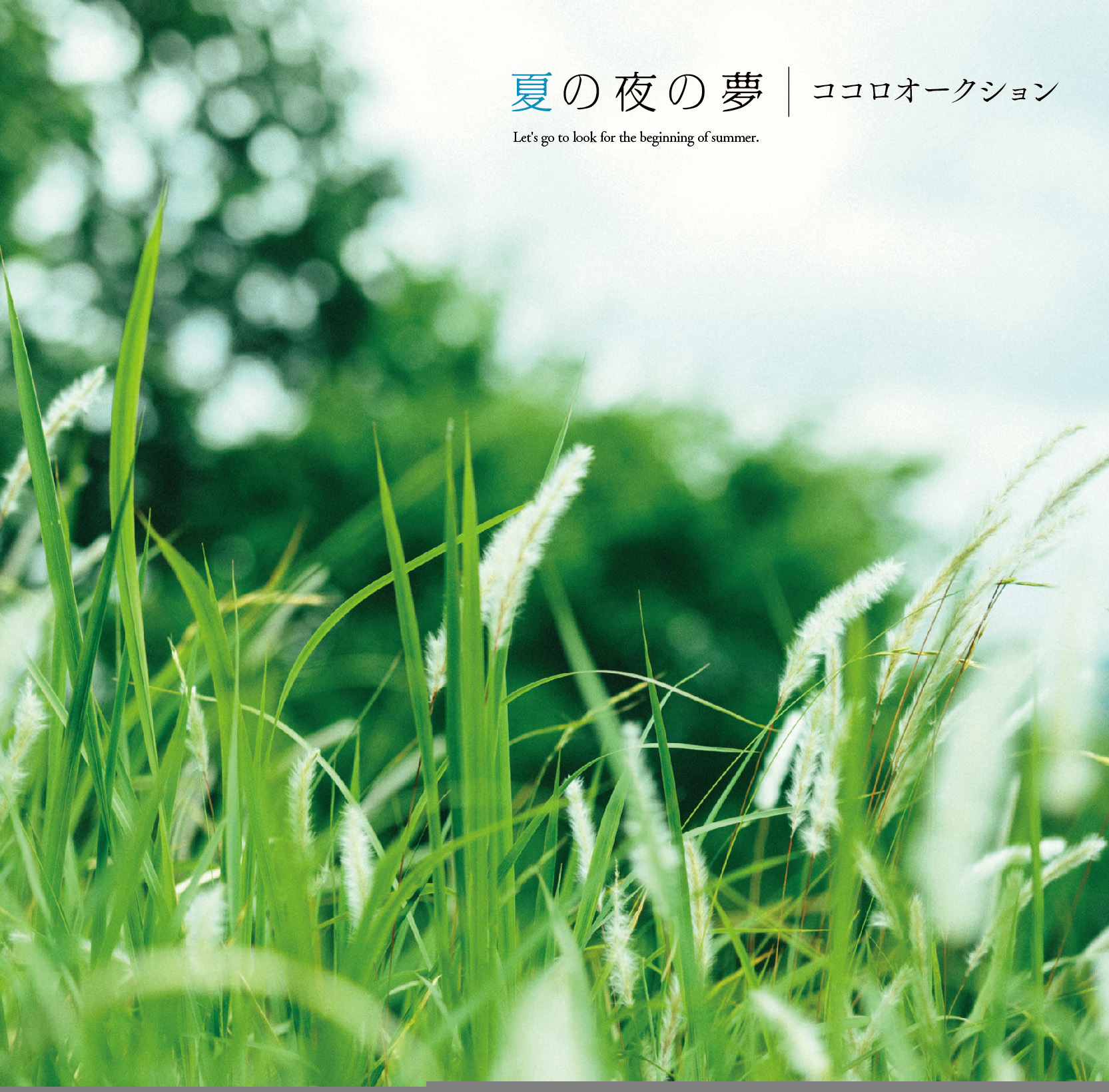 『夏の夜の夢』初回限定盤