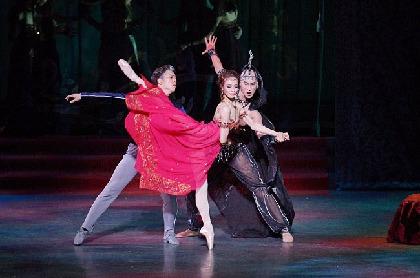 新国立劇場バレエ団『ホフマン物語』~ホフマン役・菅野英男インタビュー「出せる気持ちは全て舞台に置いてきたい」