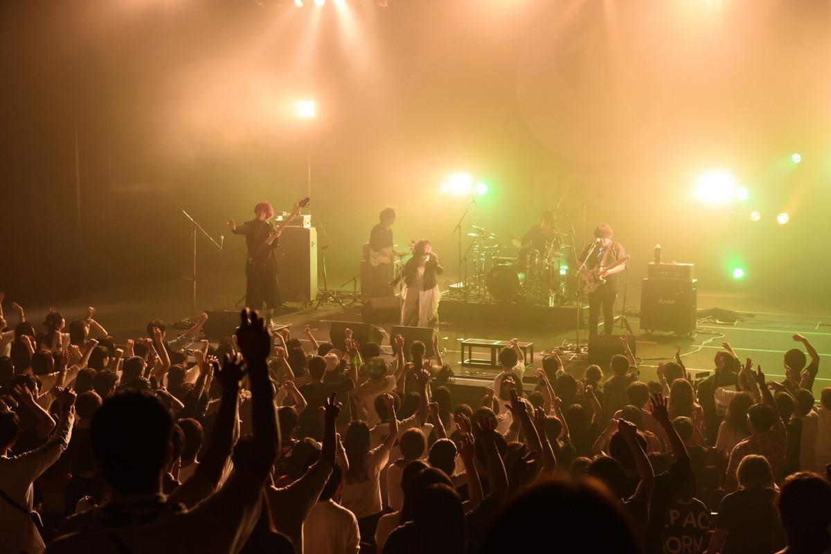 嘘とカメレオン Photo by Masanori Fujikawa