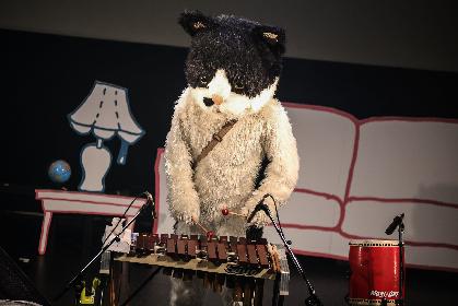 """""""天国帰りの猫"""" むぎ(猫)が2019年3月にメジャーデビュー"""
