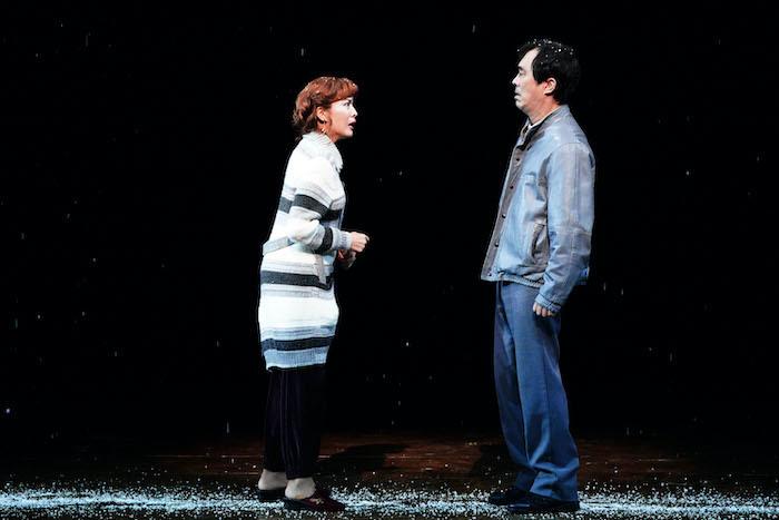 『ビリー・エリオット』舞台写真。左:安蘭けい、右:益岡徹(撮影:田中亜紀)