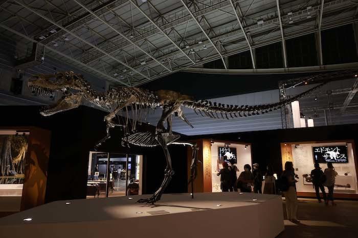ゴルゴサウルス