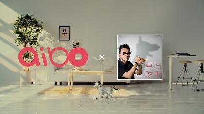 石野卓球がaiboの鳴き声でオリジナルトラックを制作、aiboが踊るMVも公開