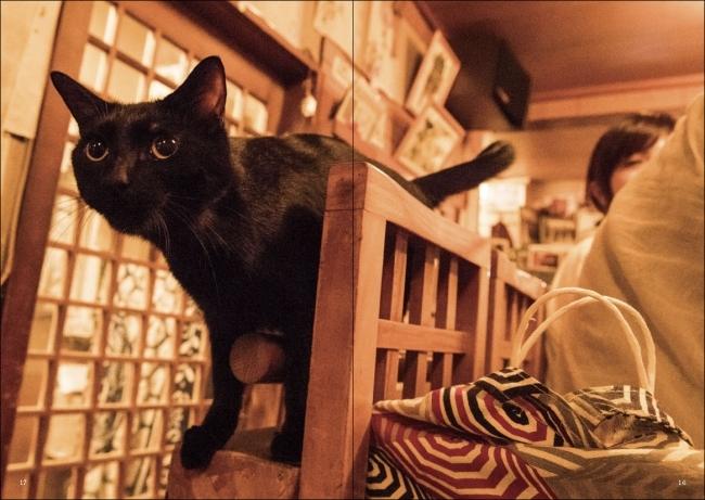 猫と呑み助 東京「猫呑み」のススメ ページサンプル