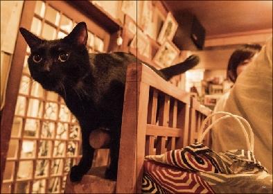 """""""猫呑み""""できる12の名店を紹介 『猫と呑み助 東京「猫呑み」のススメ』発売"""