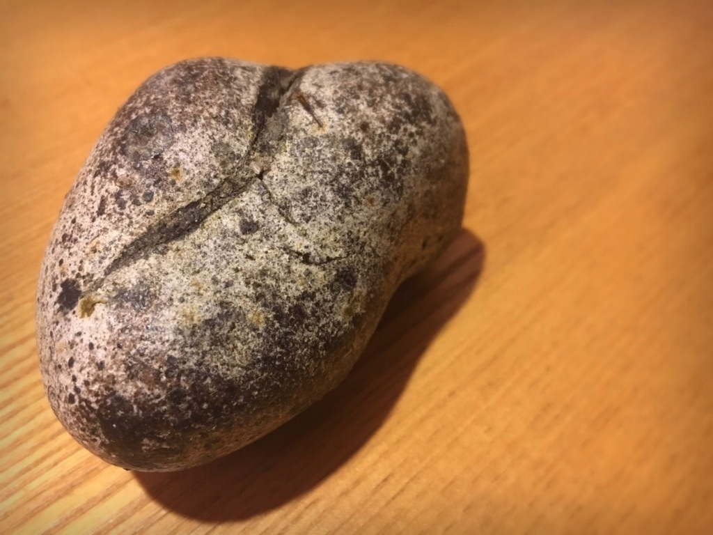 戦後初めて取れたマッコウクジラの体内で作られる結石「アンバーグリス」 提供アンバーグリスジャパン