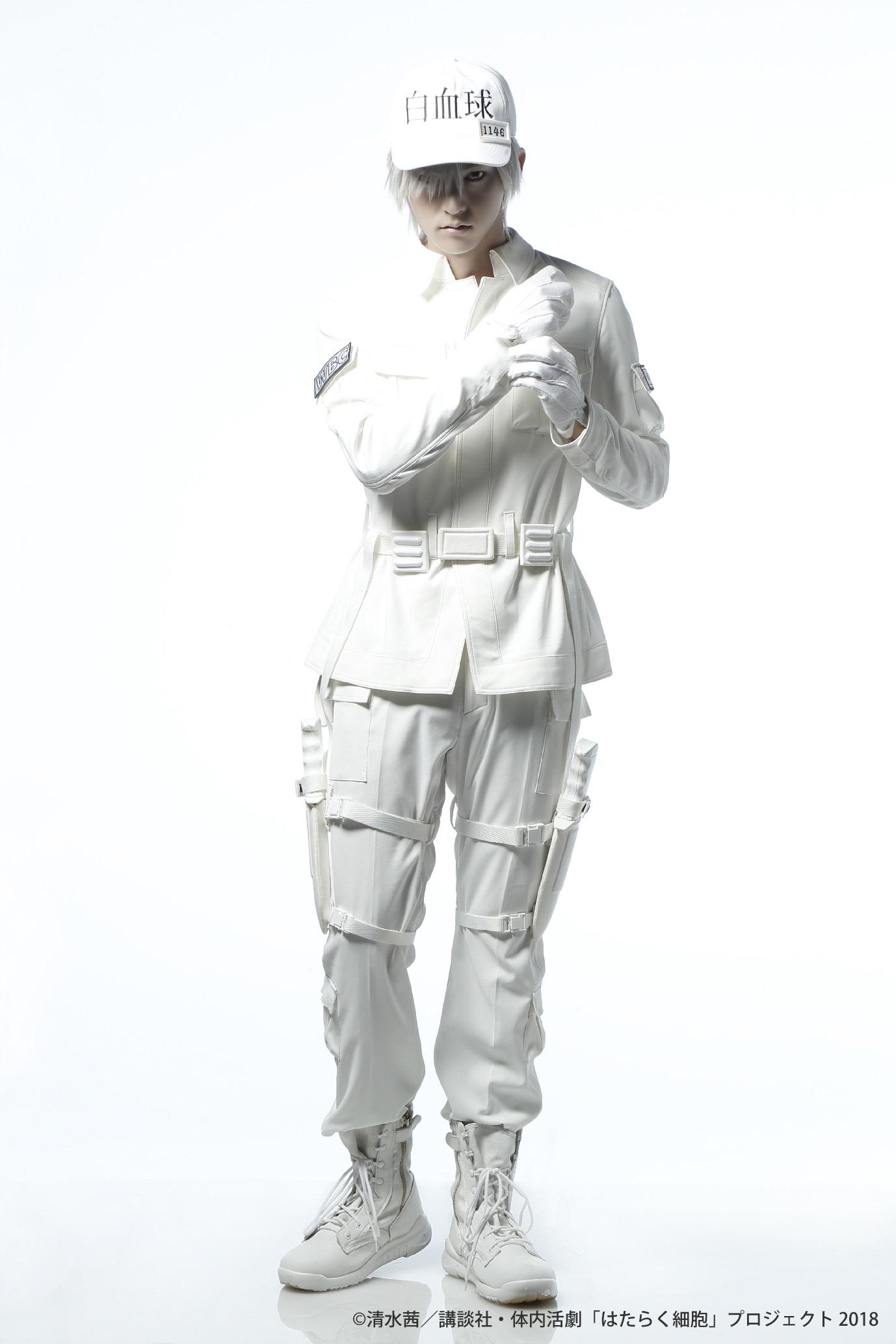 白血球(好中球)役:和田雅成