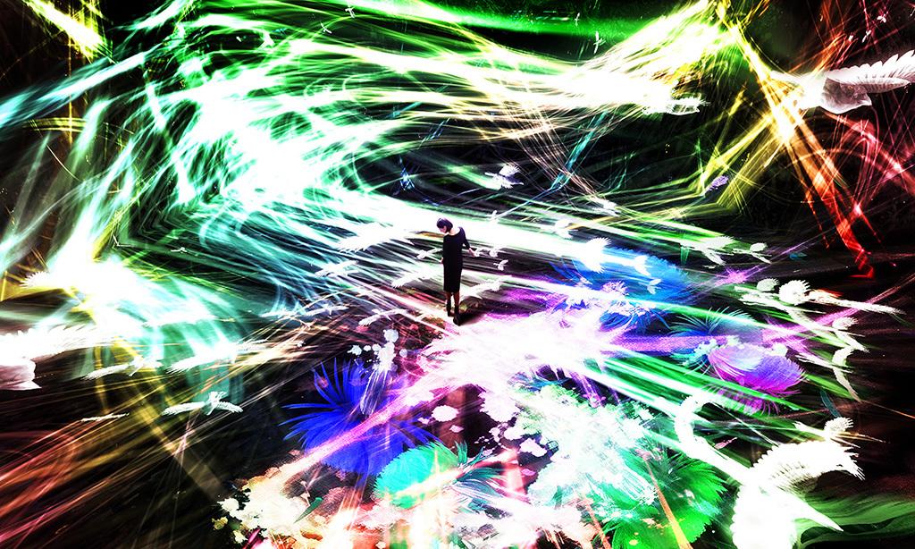 チームラボ|《追われるカラス、追うカラスも追われるカラス、そして衝突して咲いていく – Light in Space》|2016年|サウンド:高橋英明