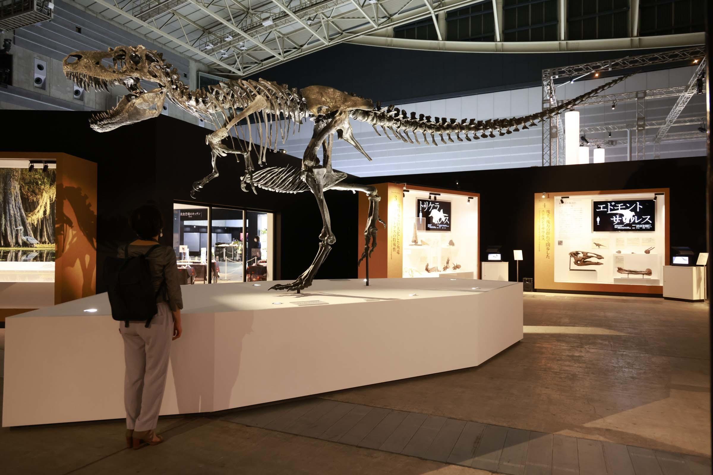 ゴルゴサウルスもまさか2021年の横浜に立つことになるなんて思ってもみなかっだろう
