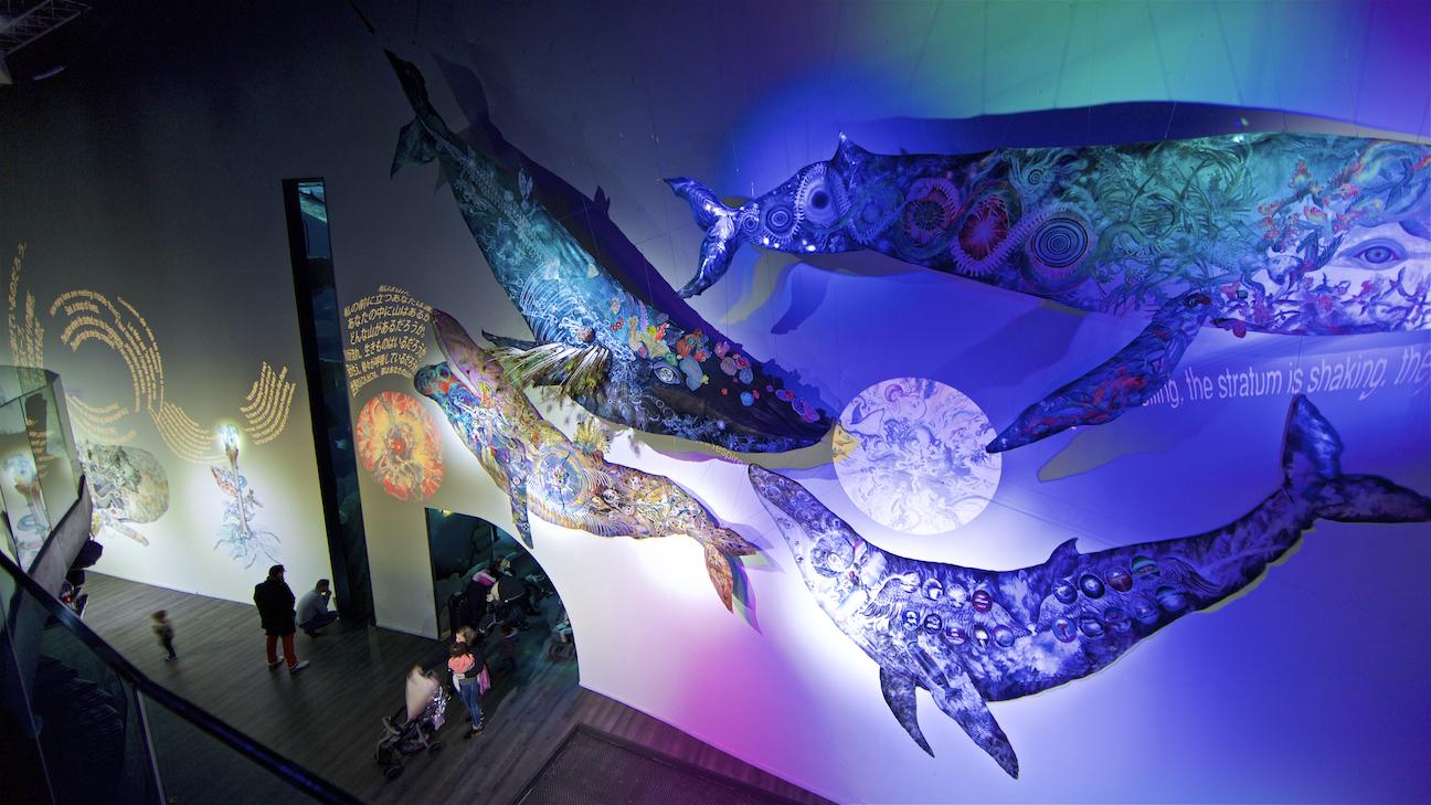 """""""L'oeil de la Baleine /鯨の目 """" パリ・アクアリウム、フランス Aquarium of Paris Cineaqua, Paris, France Year 2019/Photo by Serge Koutchinsky"""